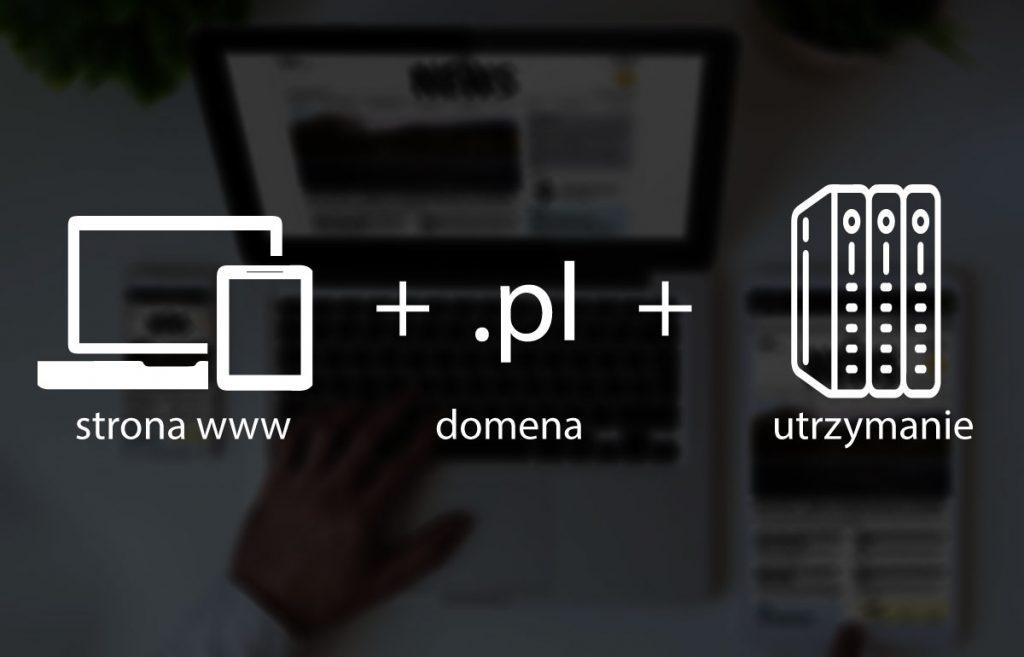 strona + domena + hosting cena